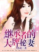 洛北作品《继承者的大牌秘妻》林潇潇湛冰川小说 书号:2650