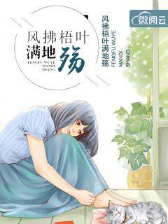精致小说《风拂梧叶满地殇》全文免费在线阅读